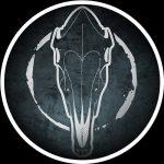 Dark Horse Collective Interview